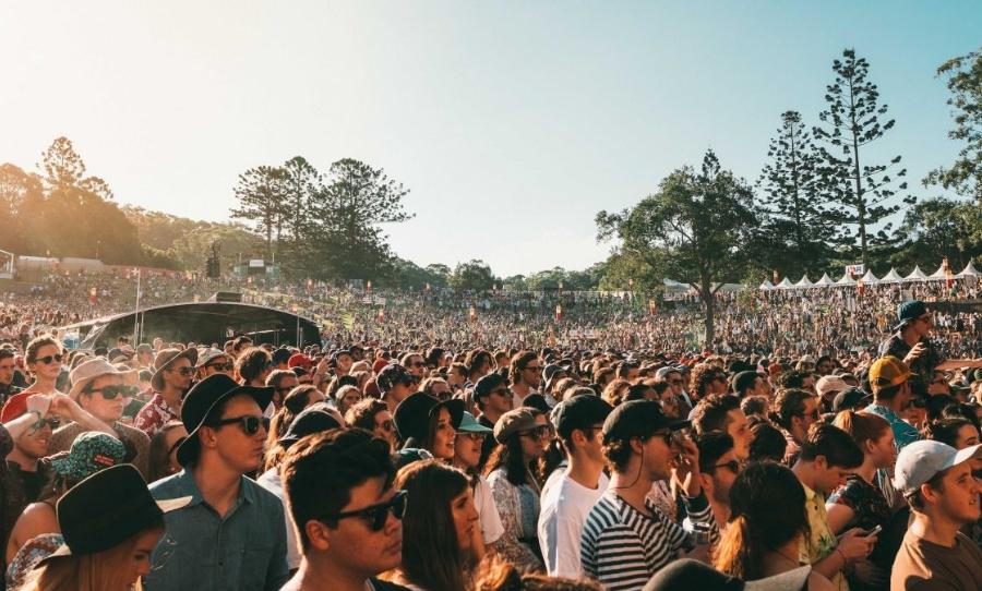 festival-coalition
