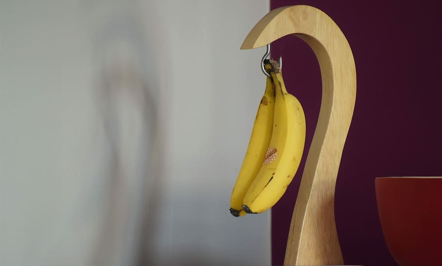 man with two penises
