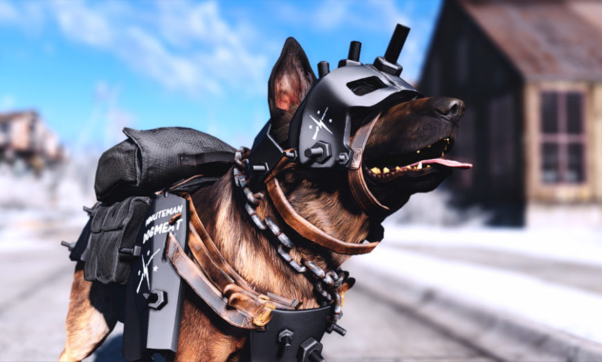 Fallout 4 Dogmeat Armour